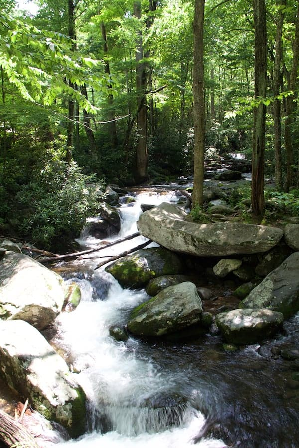 Photo of rapids in Smoky Mountain National Park.