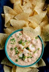 Shrimp Salsa Dip - Overhead close-up shot of dip garnished with shrimp, green onions and chips