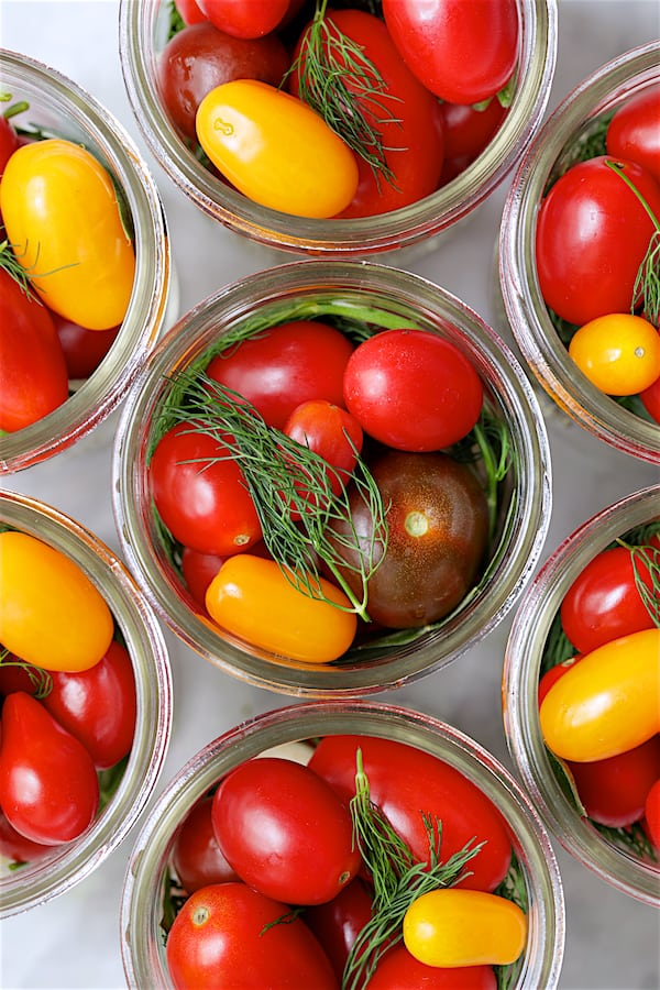 Overhead close-up shot of tomatoes and other ingredients packed into glass pint jars