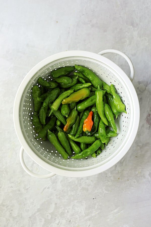 Overhead shot of shishito peppers in white colander