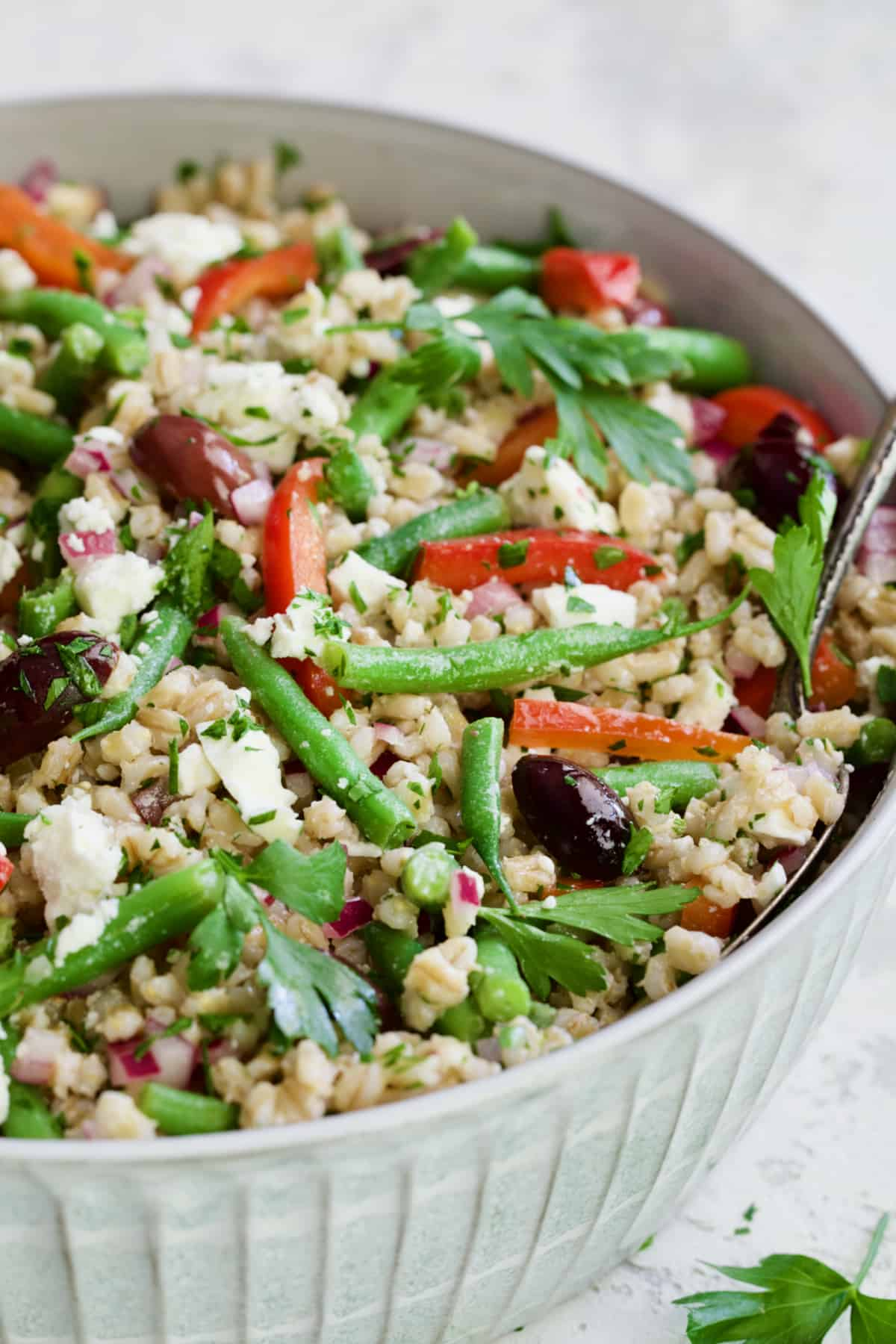 Mediterranean Barley Salad with Green Beans, Red Bell Pepper, Olives and Feta in serving bowl.