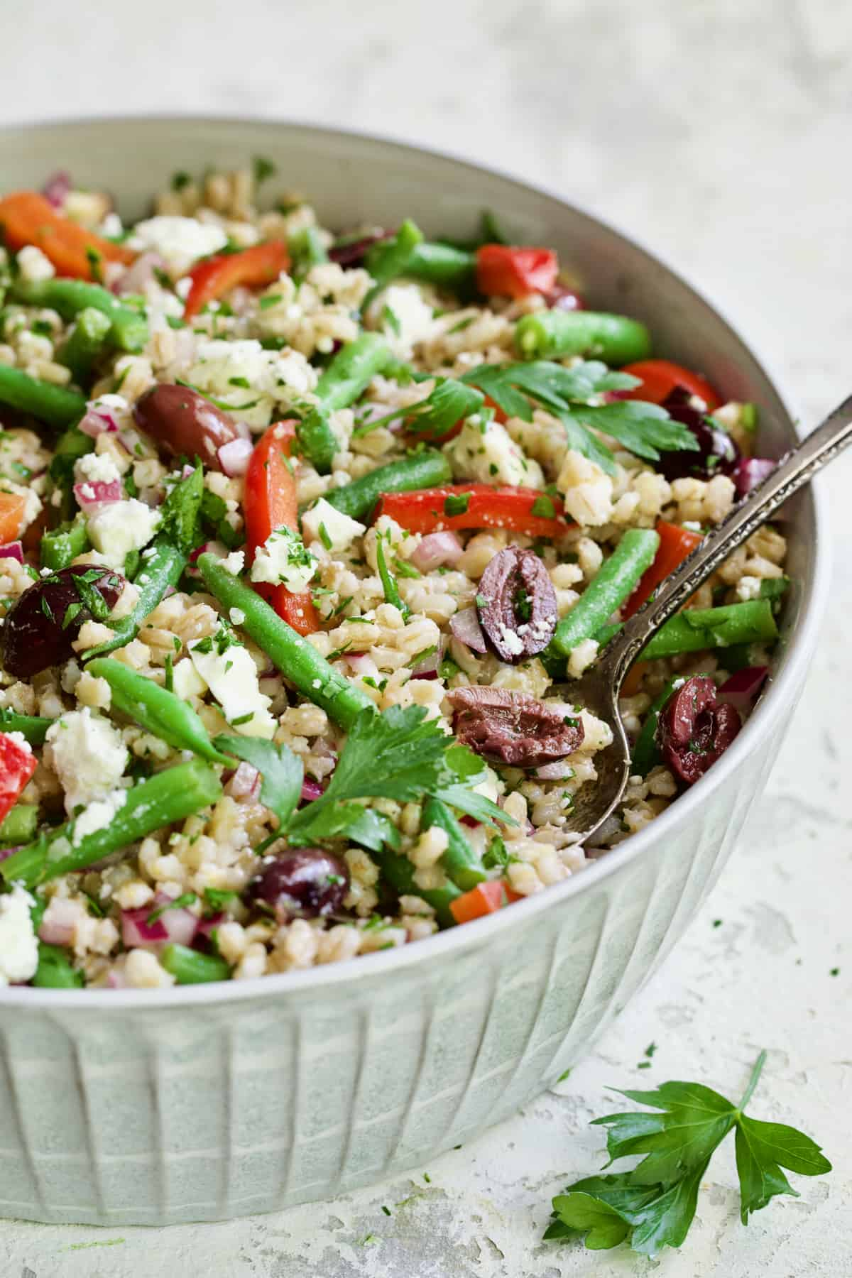Mediterranean Barley Salad with Green Beans, Red Bell Pepper, Olives and Feta